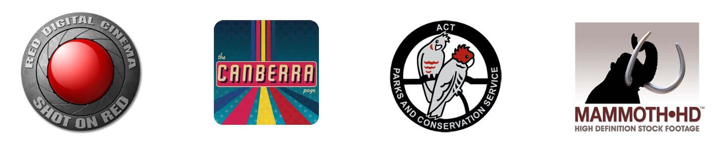 logos - partners