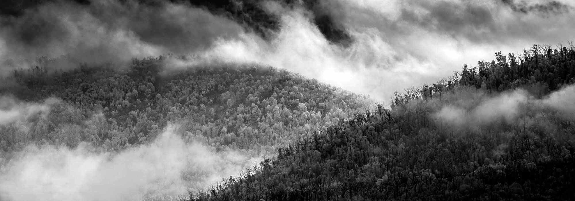 edge of light | mist